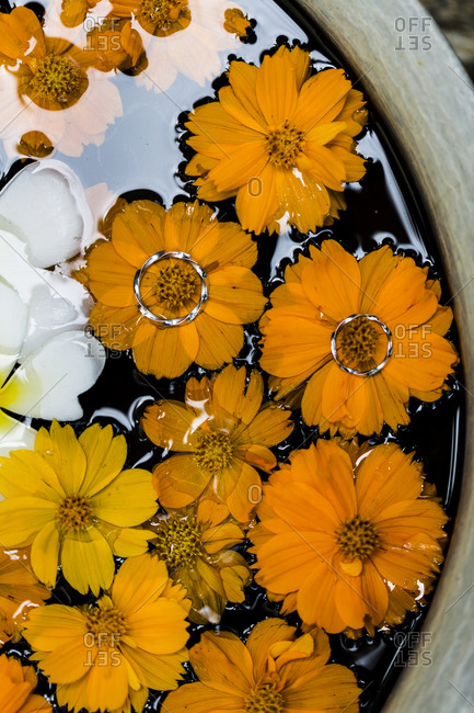 Two wedding rings on yellow flowers floating on water