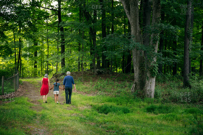 Elderly couple walking with their granddaughter in a forest