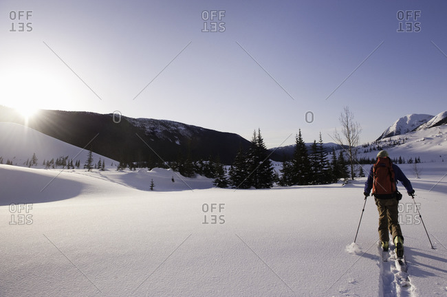 A man cross-country skiing on a sunny day
