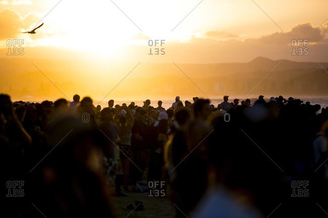 Crowded beach on the Gold Coast at sunset, Australia