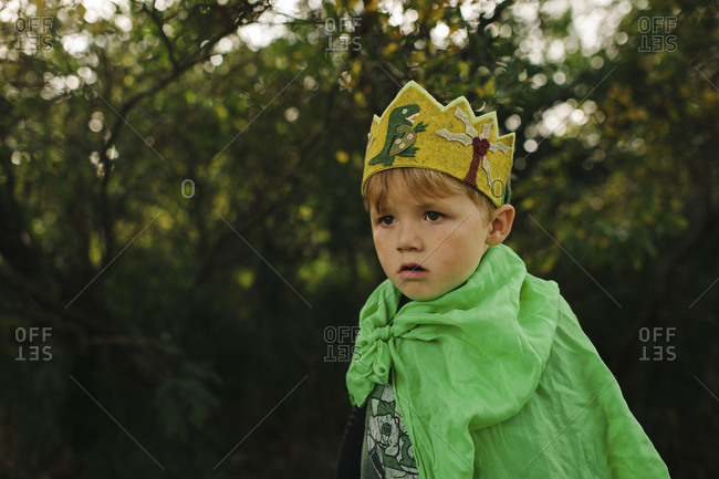 Portrait of a boy wearing crown and mantle
