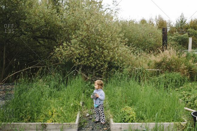 Girl standing at a community garden