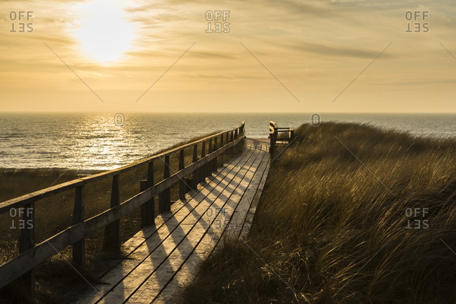 Wooden walkway through dune at sunset