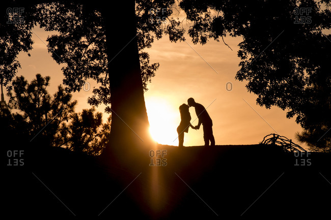 Silhouette of a young couple kissing under a tree at sunset