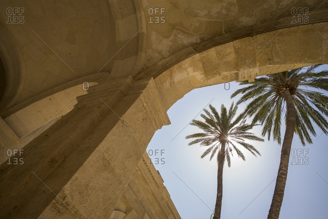 Palm trees in front of Cathedral of Almeria