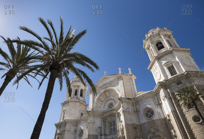 Palm trees in front of Cathedral