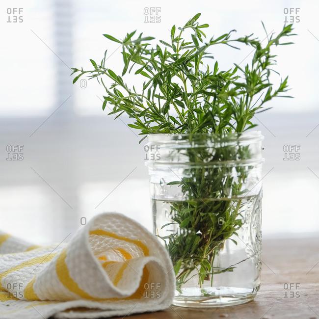 Rosemary in a jar