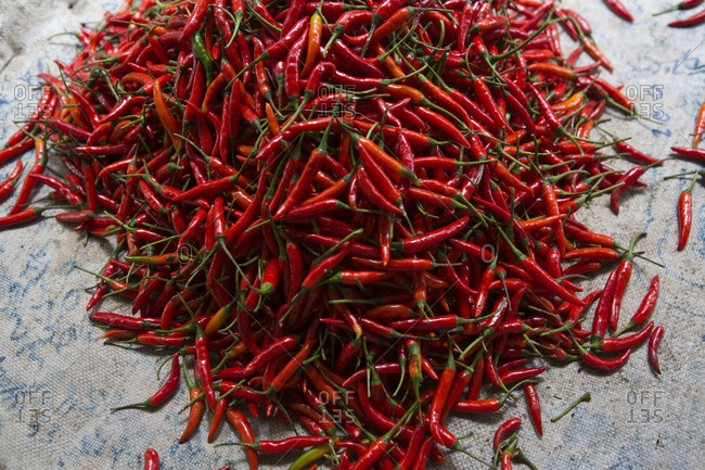 Large pile of small hot chili peppers