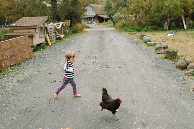 Young girl chasing the chickens in rural road