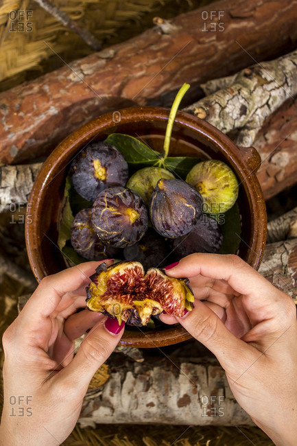Close up of woman opening up a ripe fig