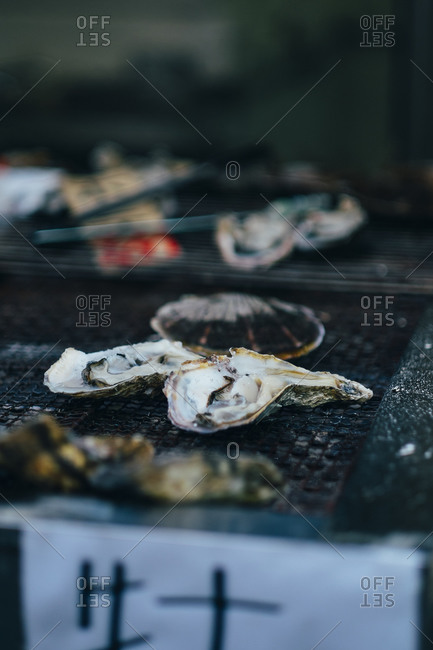 Oysters sit on display