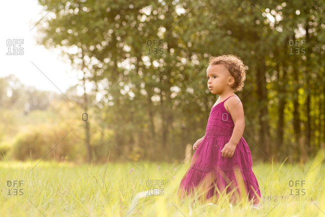 Toddler girl in dress stands in a field