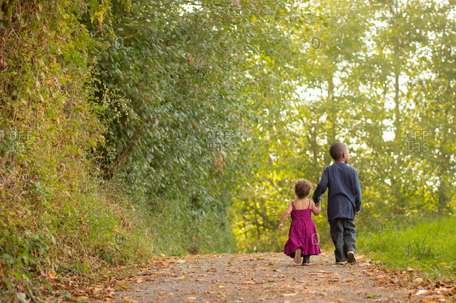 Young boy and toddler sister walk away down a wooded path