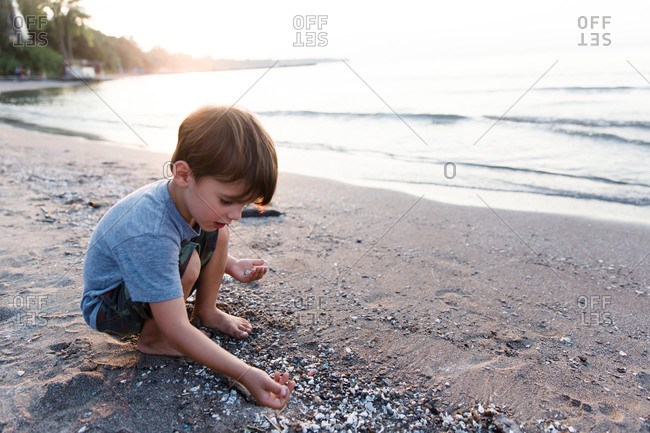A boy collects shells on the beach