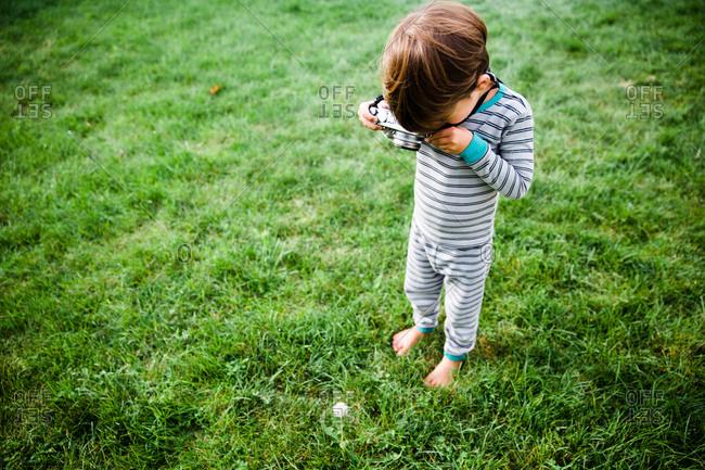 A boy takes a photograph of a dandelion