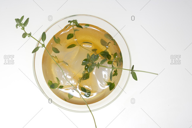 Herbs float in a cocktail