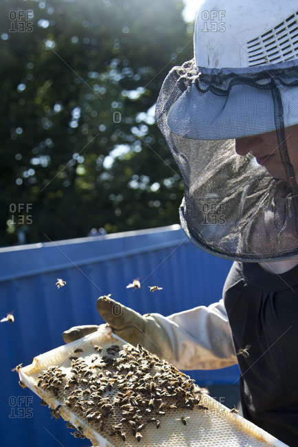 A woman holds a honeycomb