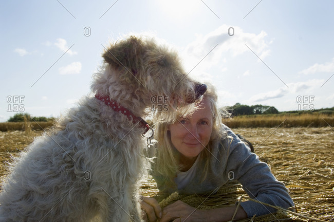 A small dog sitting and looking into the distance with woman beside him on the ground Harvest