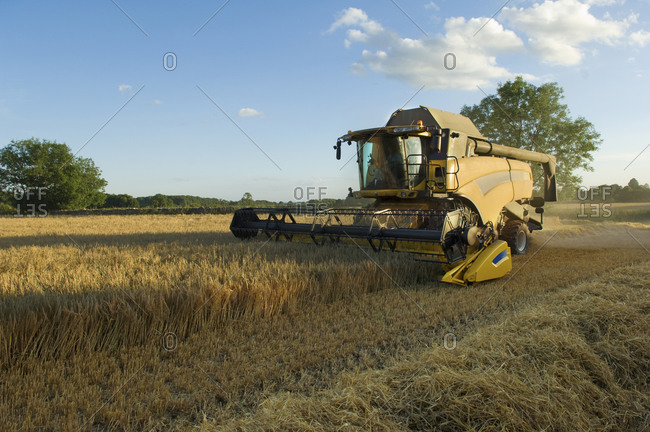 A combine harvester driver working in a field