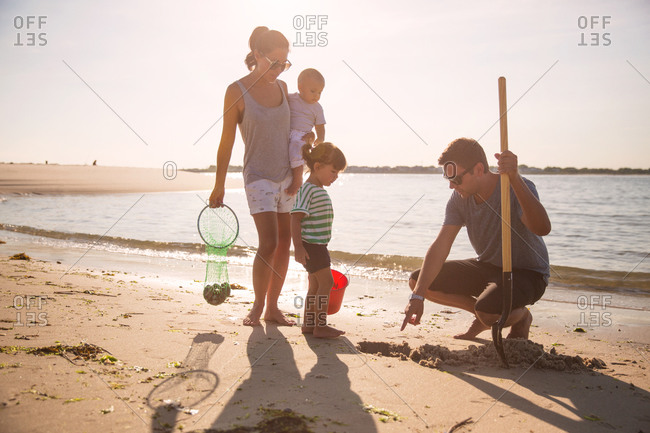 Family collecting shells on the beach