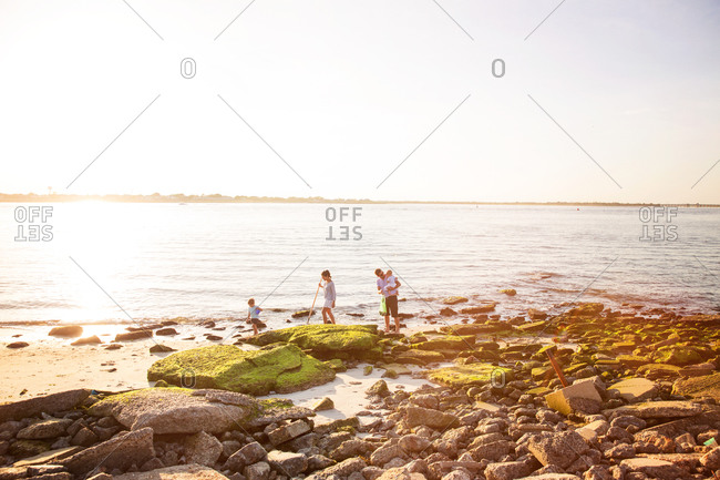 Family collecting shells on the shore