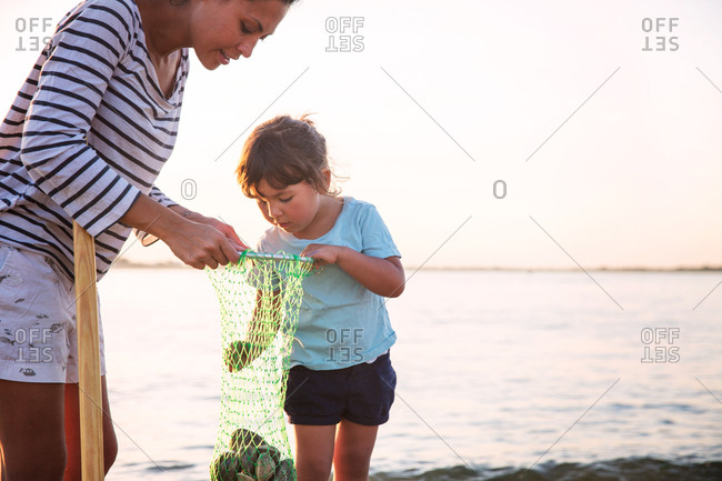 Girl collecting clams with her mother