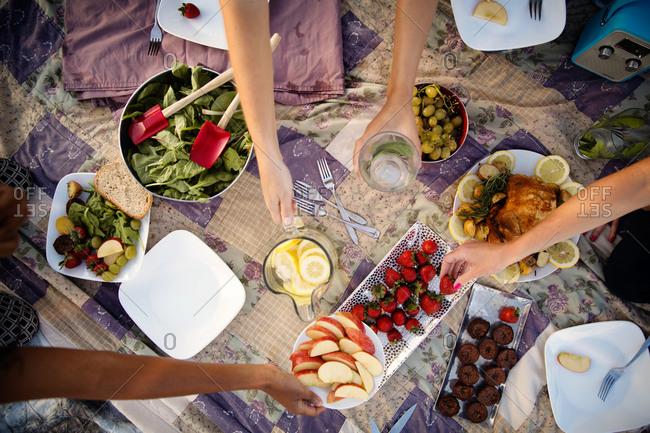 Young women having a picnic