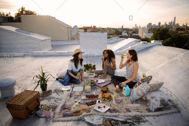 Friends talking during a picnic on a rooftop in Brooklyn