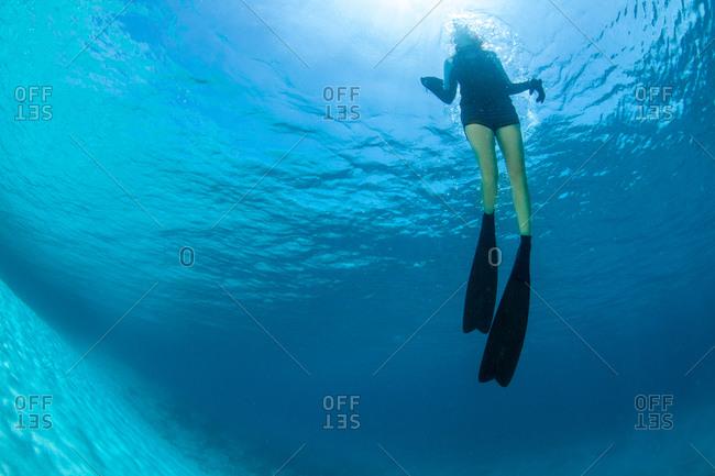 Diver near Caribbean drop off