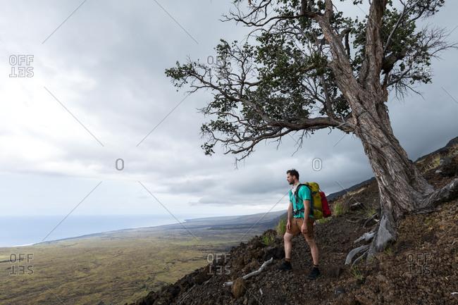A hiker next to tree in Hawai'i