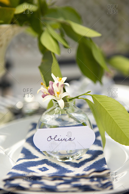 Elegant place setting with name tag