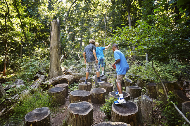 Young boys walking on tree stumps in a forest