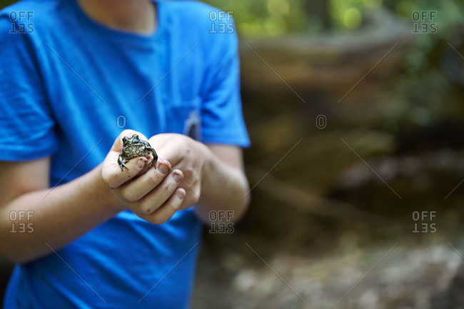 Young boy holding a frog in his hands