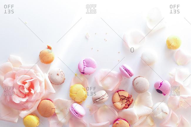 Studio shot of macaroons and rose petals