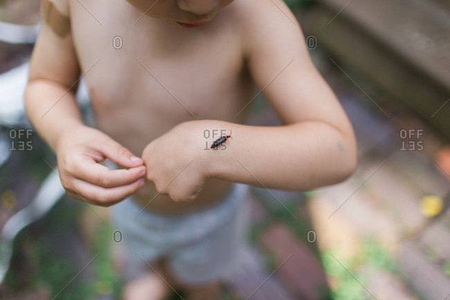 Bug crawling on a child's hand