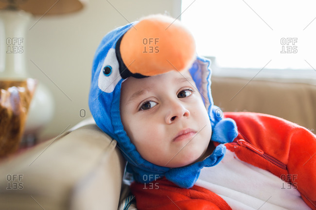 Boy wearing a parrot costume
