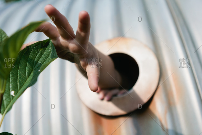 Hand reaching for leaf