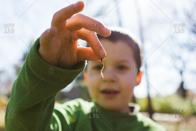 Young boy holding worm