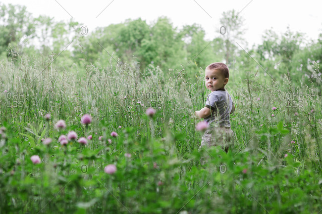 Toddler in field looking back