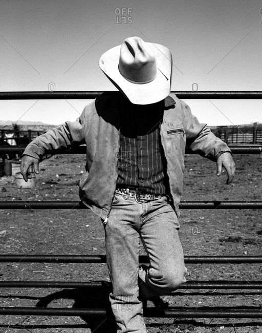 Cowboy on corral fence