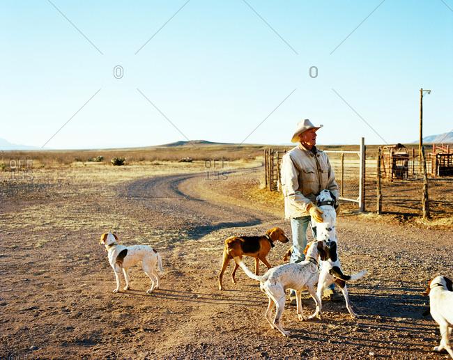 Cowboy greeting hound dogs