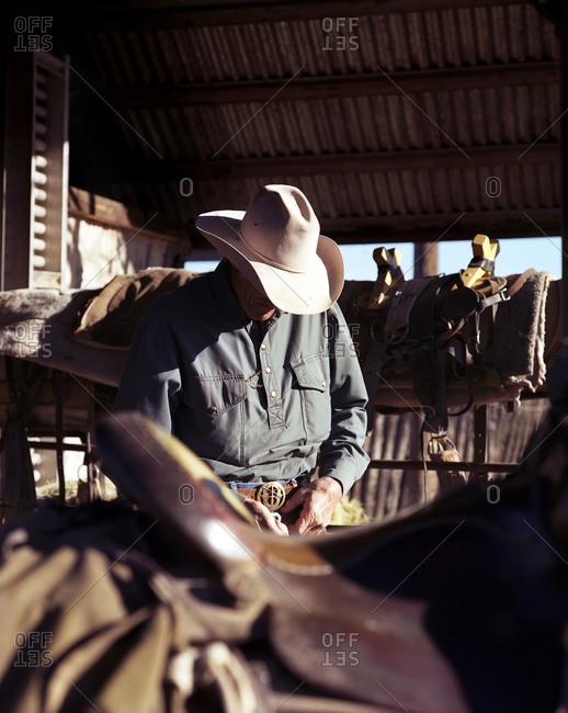 Cowboy preparing his saddle inside stable