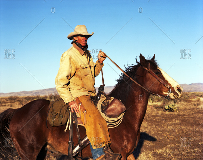 Cowboy horseback on open plains