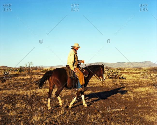 cowboy riding his horse on the open plains