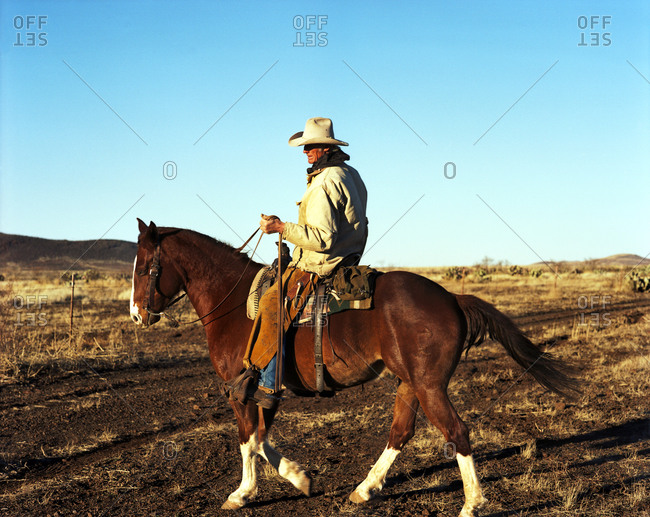 Cowboy and horse on the open plains