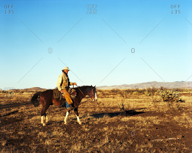 Cowboy riding horse on western plains