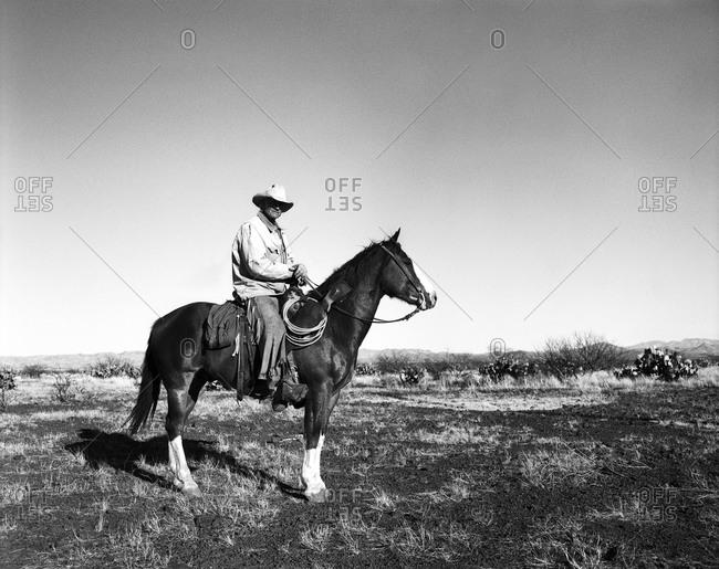 Cowboy atop horse