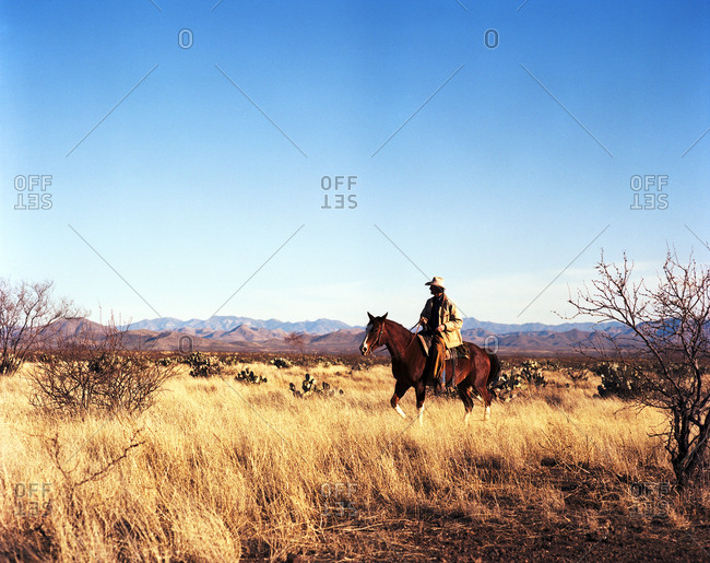 Cowboy riding horse in grassy plains