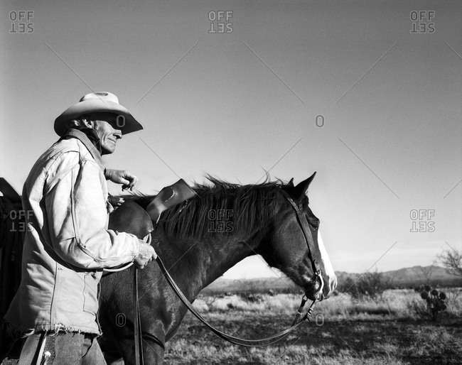 Cowboy holding horse's reins - Offset