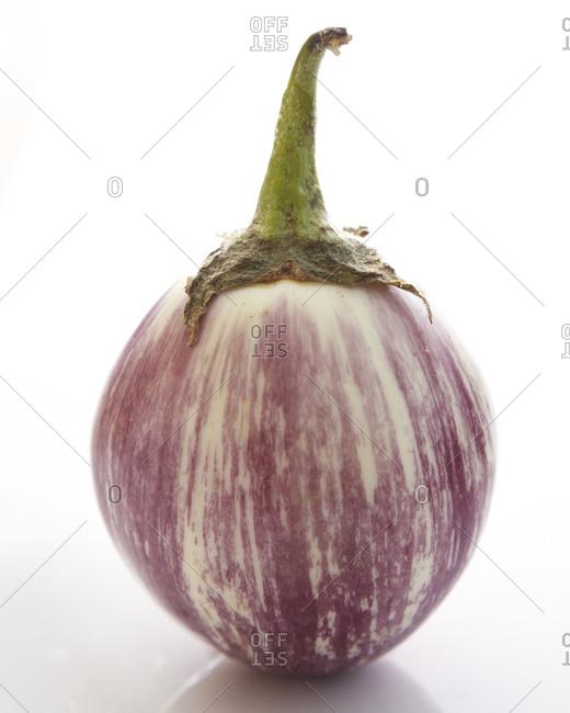 Japanese eggplant isolated on white background